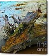 Down On The Beach Canvas Print