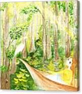 Down The Bayou Canvas Print