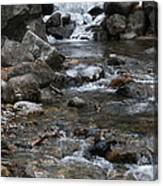 Downstream Canvas Print