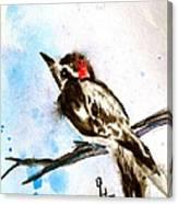 Downy Woodpecker Sumi-e Canvas Print