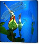 Dragonfly And Bud On Blue Canvas Print