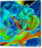 Dragonfly On A Cosmic Rose Canvas Print
