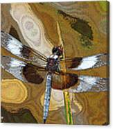 Dragonfly Waiting For A Fly Canvas Print