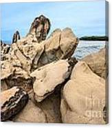 Dragon's Teeth Closeup Canvas Print