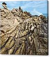 Dragon's Teeth Canvas Print
