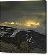 Drama Is Coming Canvas Print