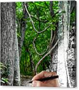 Drawn To The Woods With Imagination Canvas Print