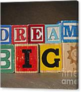 Dream Big Canvas Print