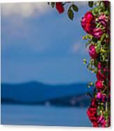 Dream Full Of Roses Canvas Print
