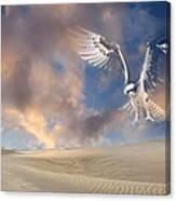 Dream Hawk Canvas Print