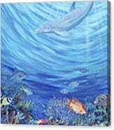 Dream Reef Canvas Print