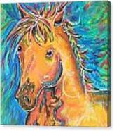 Dreamhorse Canvas Print
