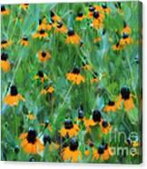Dreaming In Orange Canvas Print