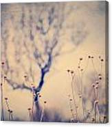Dreaming Tree. Vintage Canvas Print