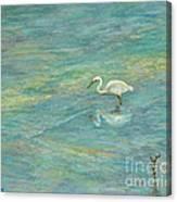 Dreamy Bird Canvas Print