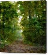Dreamy Forest Canvas Print