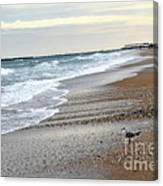 Dreamy Ocean Beach North Carolina Coastal Beach  Canvas Print