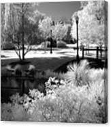 Surreal Infrared Black White Infrared Nature Landscape - Infrared Photography Canvas Print