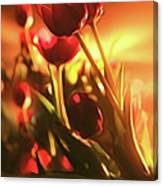 Dreamy Tulips Canvas Print