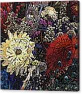 Dried Delight 6 Canvas Print
