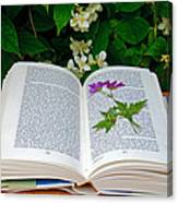 Dried Flower In A Book Canvas Print