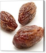 Dried Medjool Dates Canvas Print