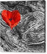 Drifting - Love Merging Canvas Print