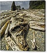 Driftwood And Sea Stacks On Ruby Beach Canvas Print