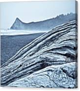Driftwood At Klamath River  Canvas Print