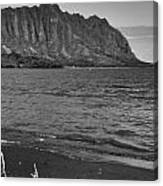 Driftwood-black And White Canvas Print