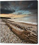 Driftwood Laying On The Gravel Beach Canvas Print