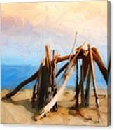 Driftwood Sculpture At Rincon Canvas Print