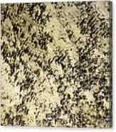 Dripstones Canvas Print