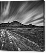 Drives You Wild Canvas Print
