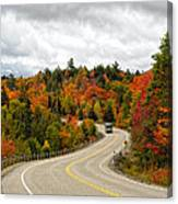 Driving Through Algonquin Park In Fall Canvas Print