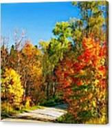 Driving Through Autumn Canvas Print