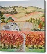 Driving Through Paso Robles Canvas Print