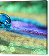Drop Of Illusion Canvas Print