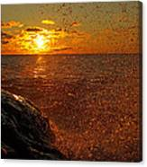 Droplets Of Gold Canvas Print