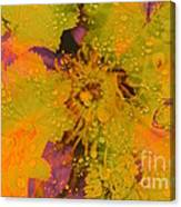 Droplets Two Canvas Print