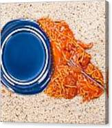 Dropped Plate Of Spaghetti On Carpet Canvas Print