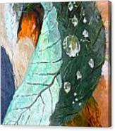 Drops On A Leaf Canvas Print