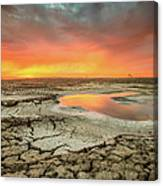 Droughts Bane Canvas Print