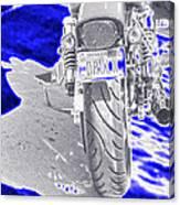 Druln Canvas Print