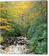 Dry Creek Bed Canvas Print