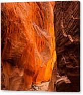 Dry Fork Slot Canyon Canvas Print