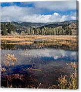 Dry Lagoon In Winter Panorama Canvas Print