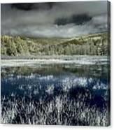 Dry Lagoon Winter Canvas Print