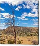 Dry Landscape Canvas Print