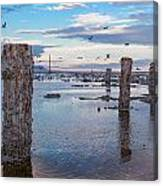 Drying Dock Canvas Print